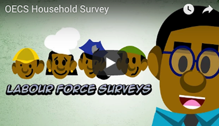 Labour Force Survey video